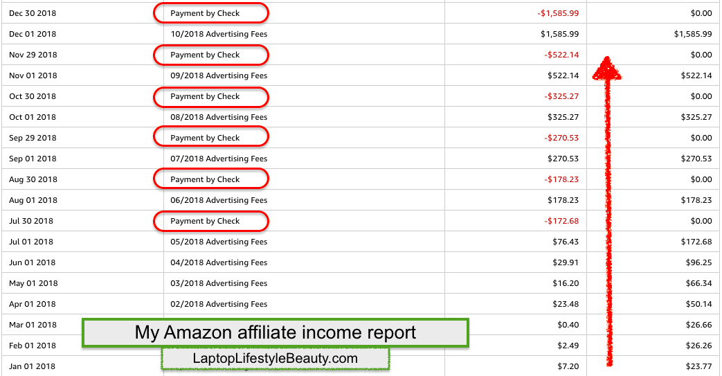 My Amazon affiliate income report (the screenshot of earnings made with my Amazon niche site)